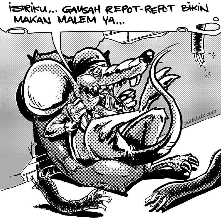 Tikus dan Proyek Makan Kabel