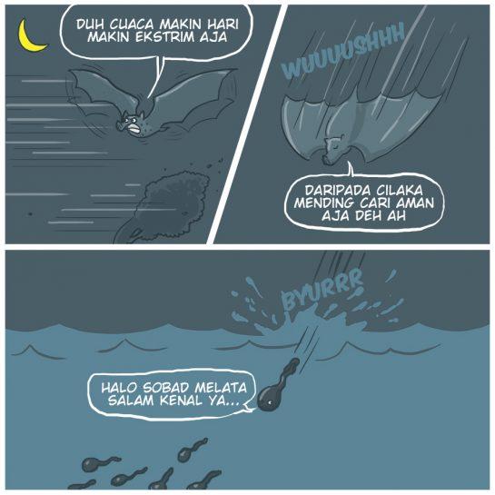 Mendadak Jadi Amfibi